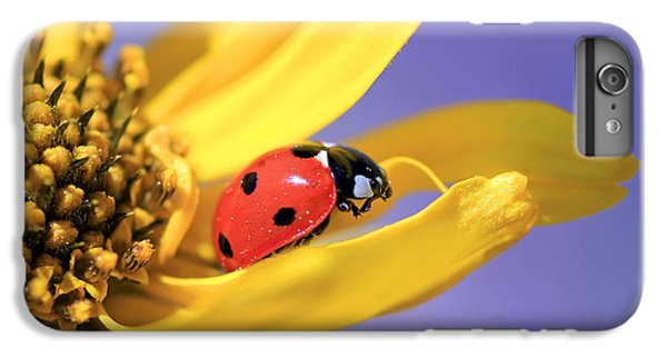 The End IPhone 6 Plus Case