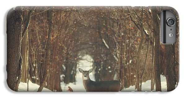 The Forest Of Snow White IPhone 6 Plus Case