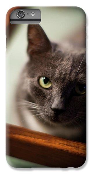 The Gaze IPhone 6 Plus Case