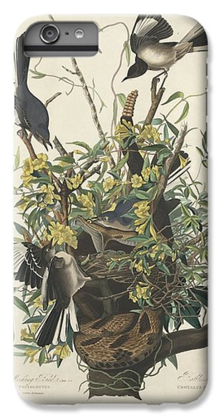 Mockingbird iPhone 6 Plus Case - The Mockingbird by Dreyer Wildlife Print Collections