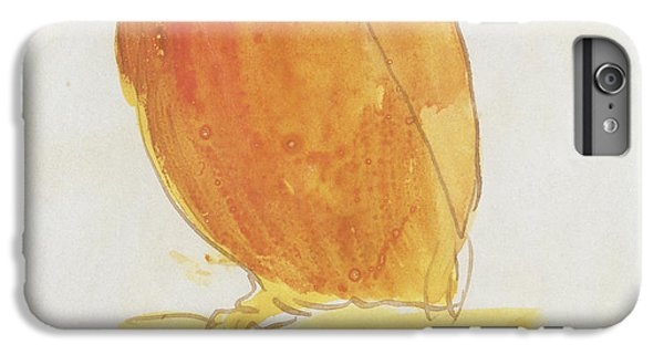 Parakeet iPhone 6 Plus Case - The Orange Color Bird by Edward Lear