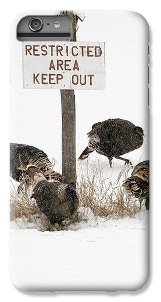The Turkey Patrol IPhone 6 Plus Case by Mike Dawson
