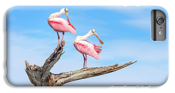 The View From Above IPhone 6 Plus Case by Mark Andrew Thomas