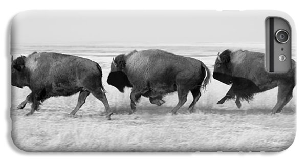 Three Buffalo In Black And White IPhone 6 Plus Case by Todd Klassy