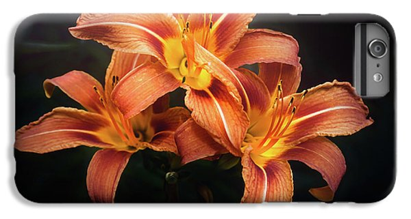 Lily iPhone 6 Plus Case - Three Lilies by Scott Norris