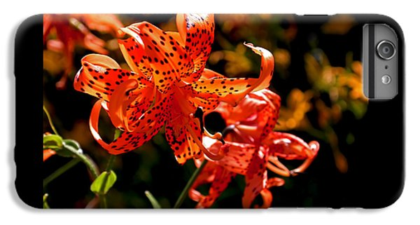 Tiger Lilies IPhone 6 Plus Case by Rona Black