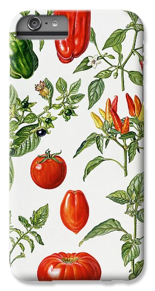 Tomatoes And Related Vegetables IPhone 6 Plus Case by Elizabeth Rice