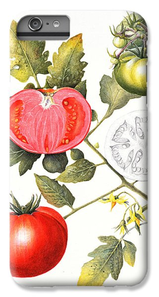 Tomatoes IPhone 6 Plus Case by Margaret Ann Eden