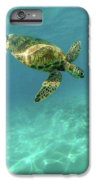 Tortoise IPhone 6 Plus Case