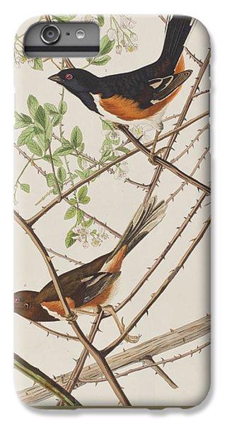Bunting iPhone 6 Plus Case - Towhe Bunting by John James Audubon