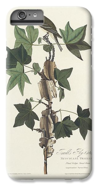 Flycatcher iPhone 6 Plus Case - Traill's Flycatcher by Dreyer Wildlife Print Collections
