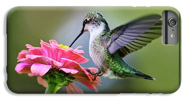 Tranquil Joy Hummingbird Square IPhone 6 Plus Case by Christina Rollo