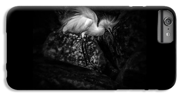 Stork iPhone 6 Plus Case - Tread Lightly by Marvin Spates