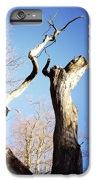 Sky iPhone 6 Plus Case - Tree by Matthias Hauser