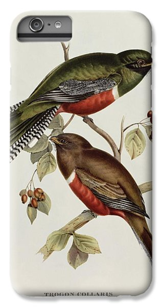 Lovebird iPhone 6 Plus Case - Trogon Collaris by John Gould