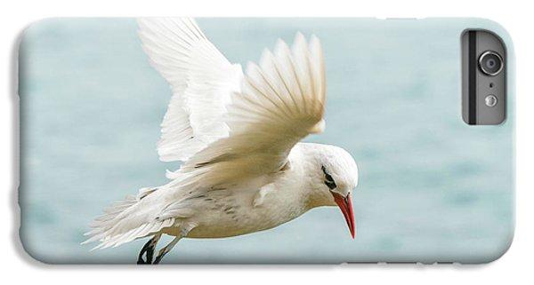 Tropic Bird 4 IPhone 6 Plus Case