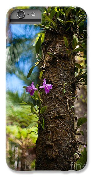 Tropical Beauty IPhone 6 Plus Case by Mike Reid