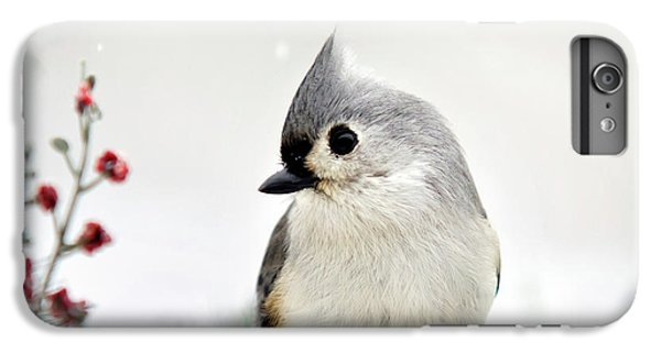 Titmouse iPhone 6 Plus Case - Tufted Titmouse Square by Christina Rollo
