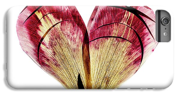 Tulip iPhone 6 Plus Case - Tulip Heart by Nailia Schwarz