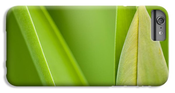 Tulip IPhone 6 Plus Case