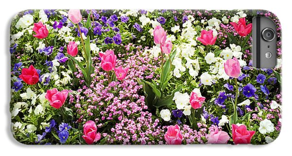 Tulips And Other Colorful Flowers In Spring IPhone 6 Plus Case by Matthias Hauser