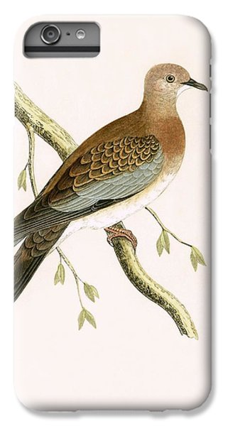 Turtle Dove IPhone 6 Plus Case by English School