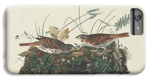 Two-colored Sparrow IPhone 6 Plus Case by Anton Oreshkin