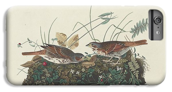 Two-colored Sparrow IPhone 6 Plus Case