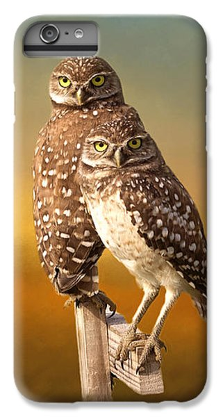 Owl iPhone 6 Plus Case - Two Of Us by Kim Hojnacki