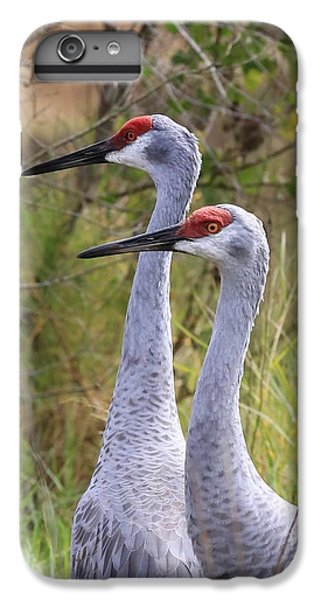 Two Sandhills In Green IPhone 6 Plus Case