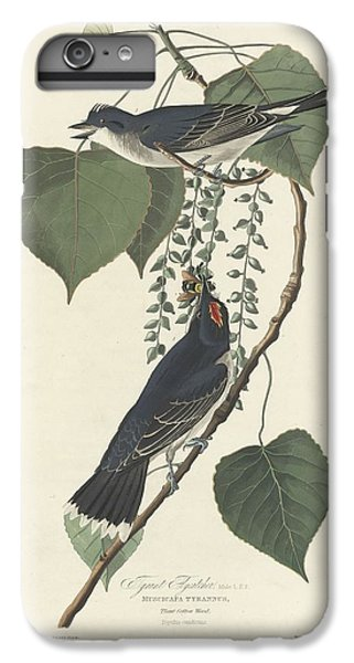 Flycatcher iPhone 6 Plus Case - Tyrant Flycatcher by Dreyer Wildlife Print Collections