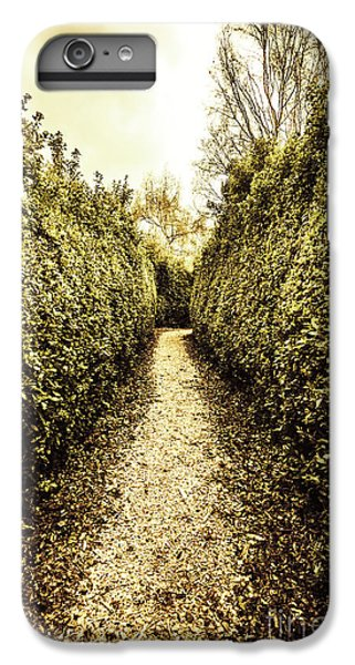 Nature Trail iPhone 6 Plus Case - Up The Garden Path by Jorgo Photography - Wall Art Gallery