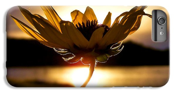 Sunflower iPhone 6 Plus Case - Uplifting by Karen Scovill