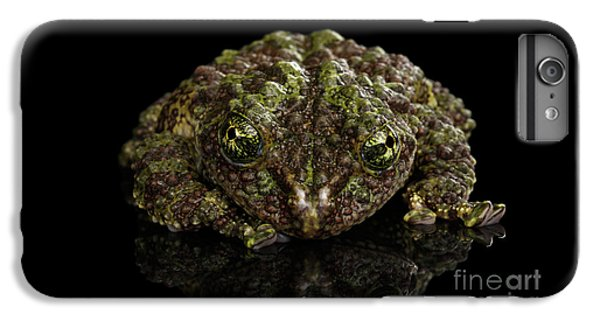 Vietnamese Mossy Frog, Theloderma Corticale Or Tonkin Bug-eyed Frog, Isolated On Black Background IPhone 6 Plus Case