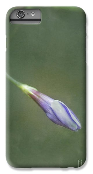 Flowers iPhone 6 Plus Case - Vinca by Priska Wettstein