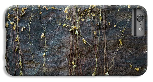 IPhone 6 Plus Case featuring the photograph Vines On Rock, Bhimbetka, 2016 by Hitendra SINKAR