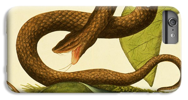 Viper Fusca IPhone 6 Plus Case by Mark Catesby