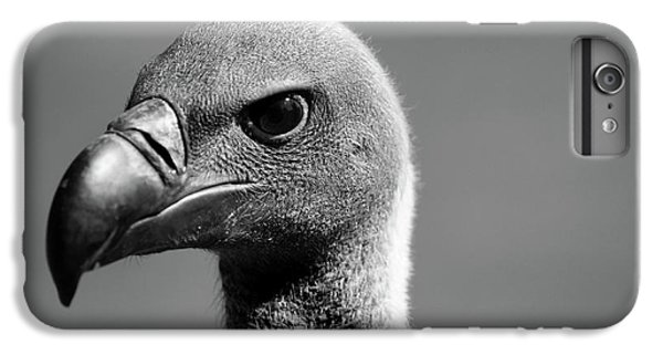 Vulture Eyes IPhone 6 Plus Case by Martin Newman