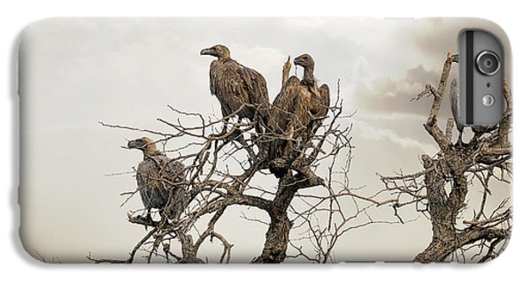 Vultures In A Dead Tree.  IPhone 6 Plus Case by Jane Rix