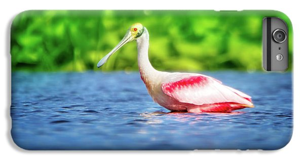 Wading Spoonbill IPhone 6 Plus Case by Mark Andrew Thomas