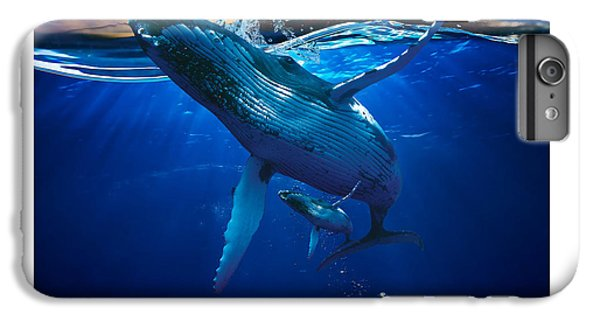 Whale Watching Art IPhone 6 Plus Case