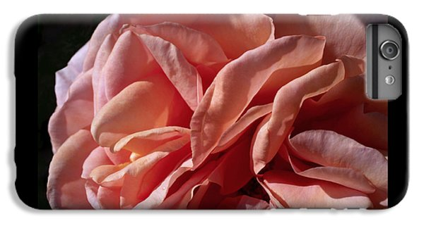 Warm Wishes IPhone 6 Plus Case by Rona Black