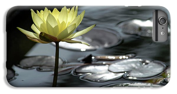 Water Lily And Silver Leaves IPhone 6 Plus Case