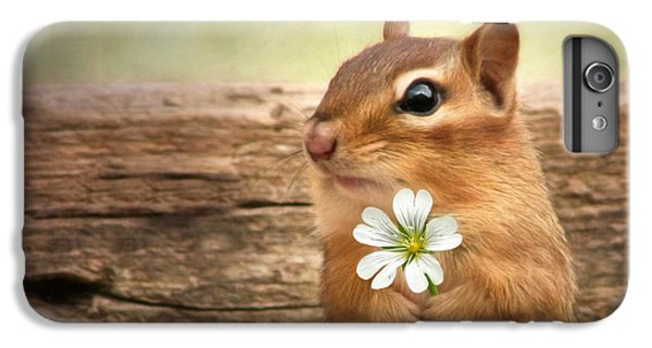 Squirrel iPhone 6 Plus Case - Welcome Spring by Lori Deiter