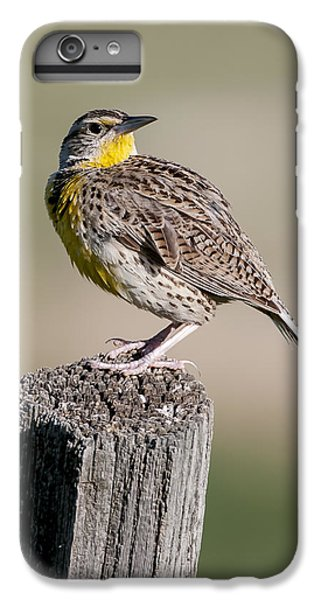 IPhone 6 Plus Case featuring the photograph Western Meadowlark by Gary Lengyel