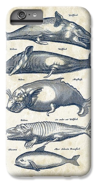 Whale Historiae Naturalis 08 - 1657 - 41 IPhone 6 Plus Case by Aged Pixel