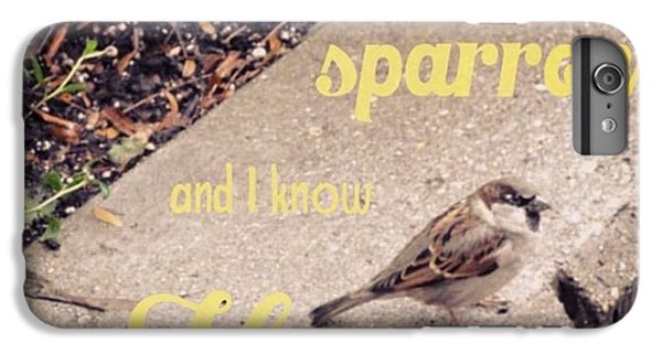Design iPhone 6 Plus Case - What Is The Price Of Two Sparrows-one by LIFT Women's Ministry designs --by Julie Hurttgam