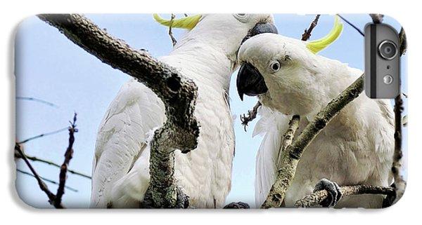 White Cockatoos IPhone 6 Plus Case by Kaye Menner