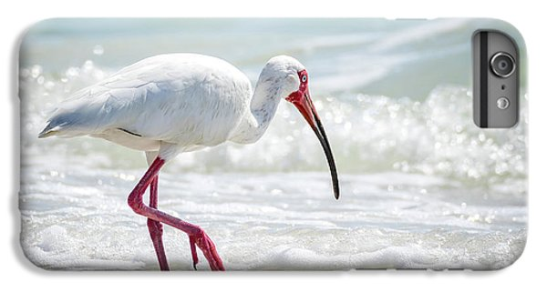 Ibis iPhone 6 Plus Case - White Ibis by Michael Weber