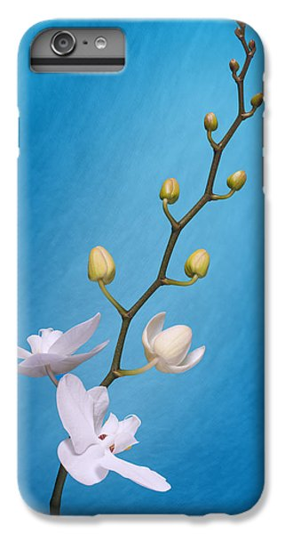 Orchid iPhone 6 Plus Case - White Orchid Buds On Blue by Tom Mc Nemar